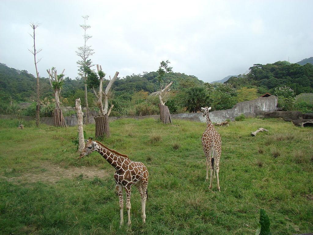 台北市立动物园
